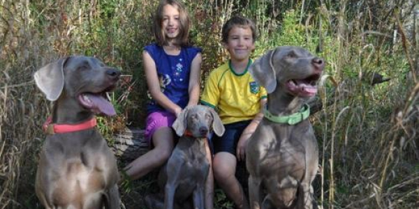 www.timberdoodleweims.net – Gallery – Families – 021