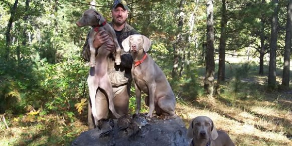 www.timberdoodleweims.net – Second Generation – 2